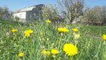 Весна в Вольнянске_10