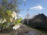 Весна в Вольнянске_3