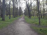 Весна в Вольнянске_6