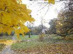 Парк Юбилейный / Осень 2013