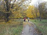 Осень в парке_7