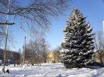 Вольнянск (декабрь 2013)